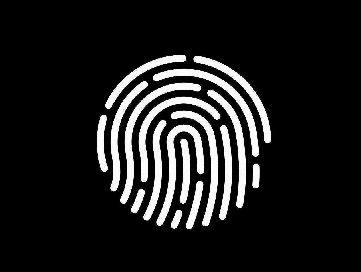 Instamotor's Fraud & Safety Team